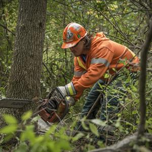 Photo of a Hydro One forestry worker