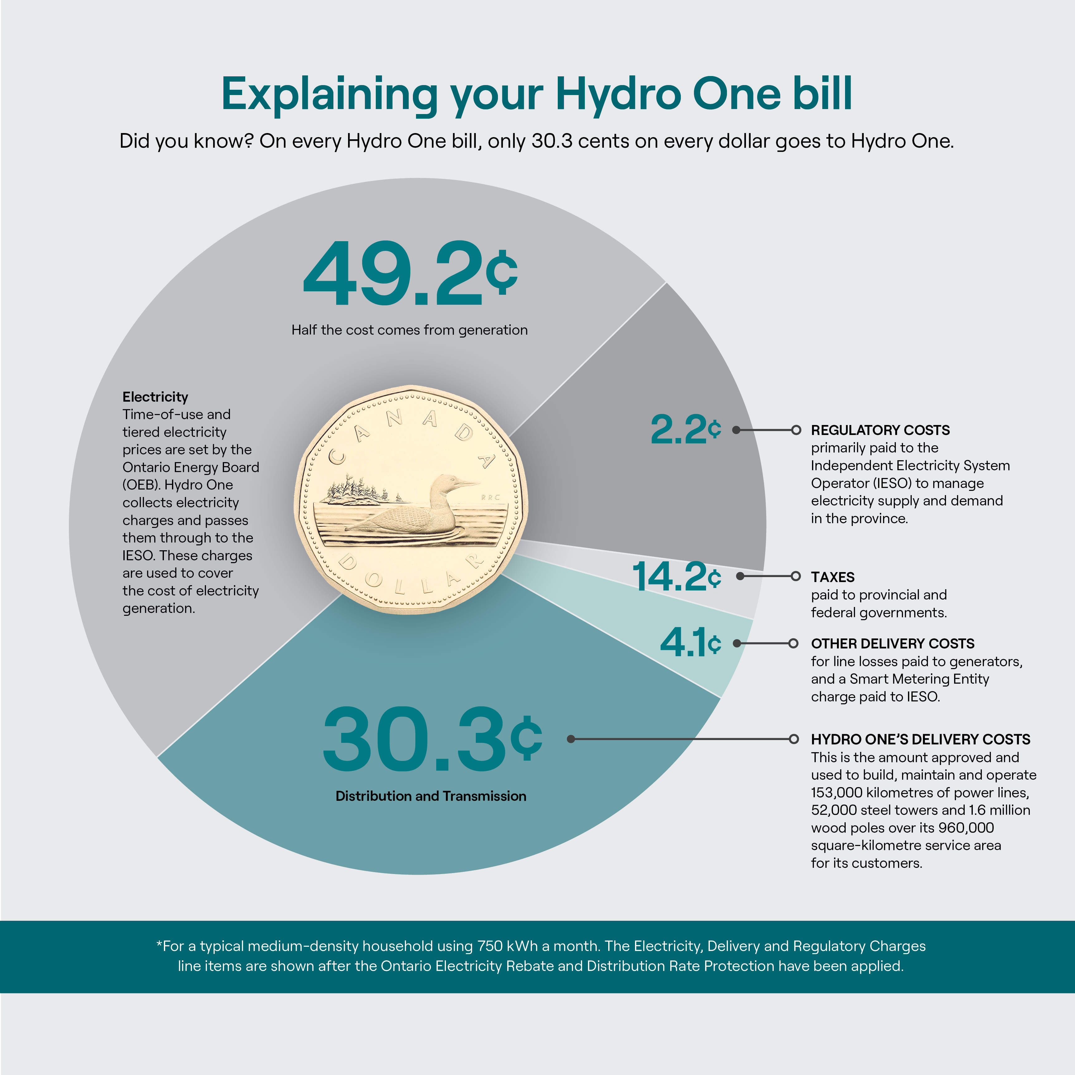Infographic Shedding Light On Your Hydro One Statement