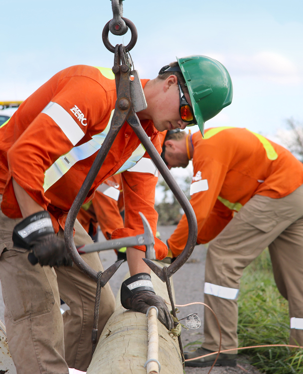 Hydro One employees working on a wood pole installation